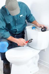 Plumbers in Mt. Juliet working toilets